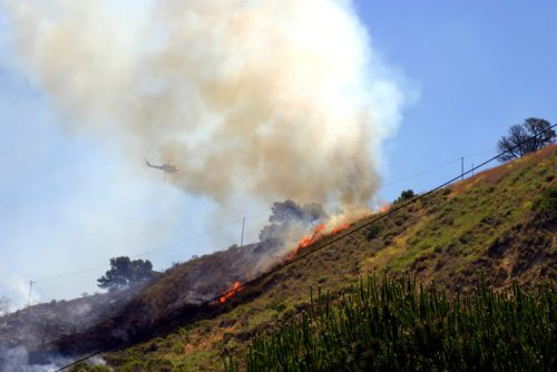Brush Fire Erupted in Elysian Park: Southern California Areas Under Threat